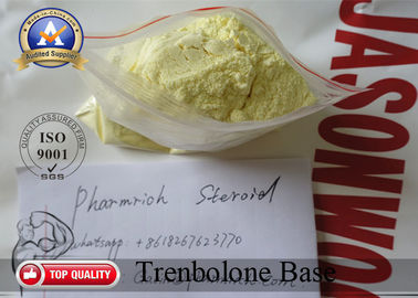 China Yellow Oral Trenbolone Steroids Powder , Trenbolone Base Bodybuilding Supplements supplier