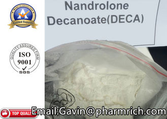 CAS 360-70-3 DECA Nandrolone Decanoate Steroid White Anabolic Steroids Powder