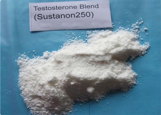 China Injectable Sustanon 250 Raw Steroid Powders Testosterone blend For Bodybuilding supplier