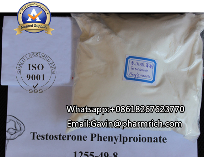 Testosterone Phenylpropionate Pharmaceutical Grade Steroids Powder For Bodybuilding