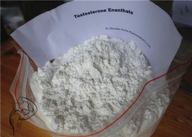 China Safe White Anabolic Steroids Muscle Mass Testosterone Enanthate Powder factory