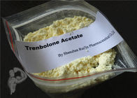 99% Injectable Muscle Building Steroids Trenbolone Acetate Finaplix Powder