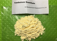 Anabolic Raw Injection Steroid Powder Trenbolone Enanthate For Muscle Building